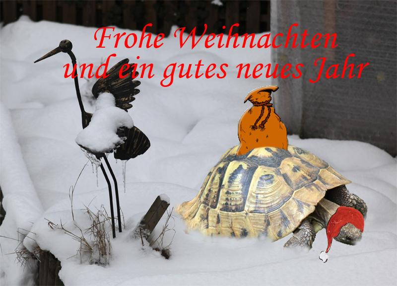 wunsch frohes weihnachtsfest